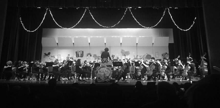 Orchestra%3A+More+Than+Just+a+Music+Class